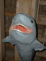Sharky by JensStockCollection