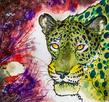 Leopardess by SunStateGalleries