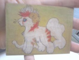 -ACEO- The Chibi Ruler by ErythraPyralis