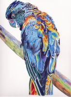 Psychedelic Parrot by LorraineKelly