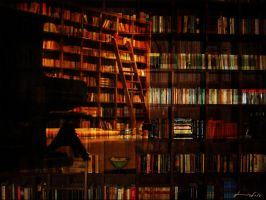 My library by iram