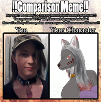 comparison meme by warp2002
