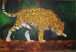 Jaguar in the Wild by Masayu122