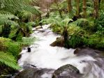Waterfalls-Marysville 2 by DanielleMiner