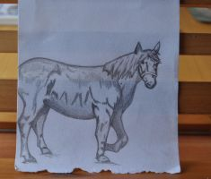 Horse by Chihito
