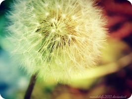 Rainbow Dandelion by monstatofu2011