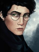 Harry Potter by robu386
