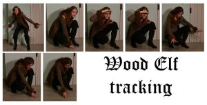 Wood Elf tracking by syccas-stock
