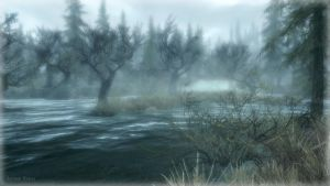 The Hjaalmarch Swamps II by Solace-Grace