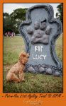 RIP Lucy by PoodleSchmoodle