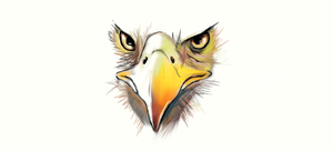 Eagle =/ by Maheen-S