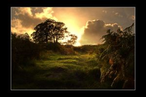 light on the land by theoden06