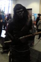 Planet of the Apes Telford 2013 by MJ-Cosplay
