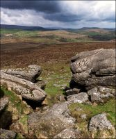 Dartmoor Rocks! by LordLJCornellPhotos