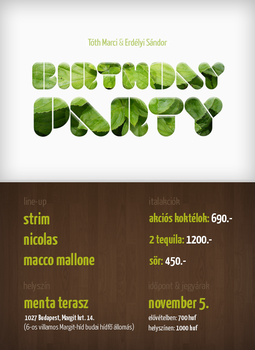 Birthday Party flyer by azdie