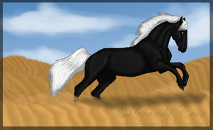 Across the Desert by sana-0095
