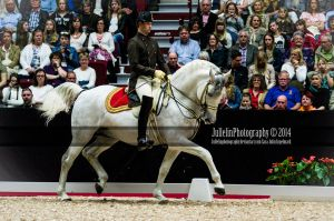 Spanish Riding School 5 by JullelinPhotography