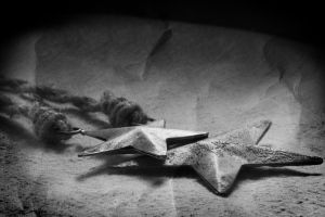 The Night's Stars Aged Black and White by KayDensPhotography