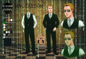 Mr. Caedom character sheet by silentsketcher