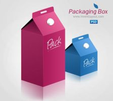 Product Packaging Box by atifarshad