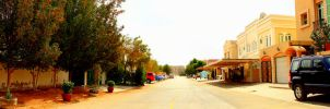 Mirdif Street Panorama by JuiceMonkey610