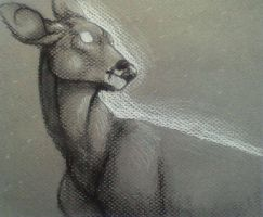 Charcoal deer. by Reyah661