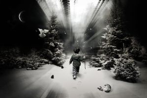NEVER.ALONE by ICDP