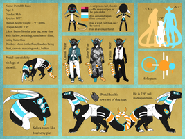 Portal B. Fates Reference Sheet [2014] by AkasukiGirl