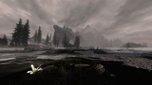 Almost to Solitude RCRN 3.5 by lupusmagus