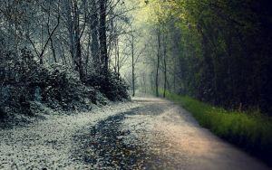 Winter/Spring by MeGustaDeviantart