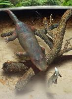 Eryops and Xenacanthus 3D by Paleo-reptiles