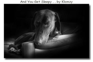 Sleepy doberman by KlomZy