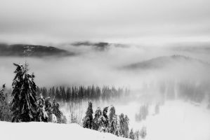 cold land II by stg123