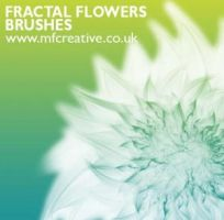 Fractal flower brushes by brushads