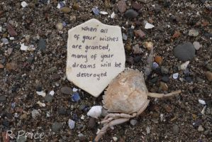 Be Careful What You Wish For by Rhiallom