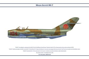 MiG-17 Afghanistan 1 by WS-Clave
