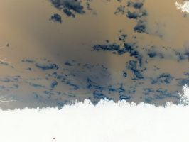 Negative trees and sky by vbcsgtscud