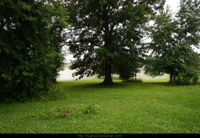 Misted Lawn by KYghost