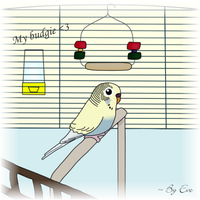 My budgie by NeverthelessLaqueta