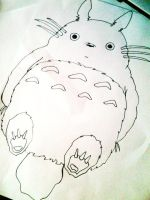 Totoro by natsuomi