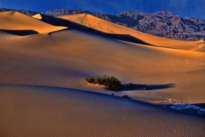 Death Valley by Rick3-14
