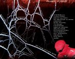 itunes Back cover - The Spider's Web Playlist - by Steamland