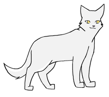Whitestorm of ThunderClan by Nightyblaze