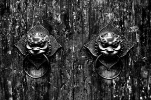 door by GleadrHou