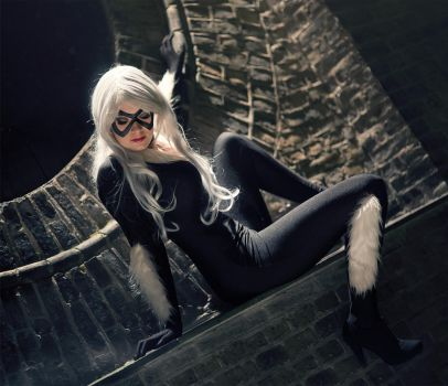 Black Cat Beauty by simplearts
