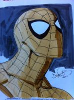 Spidey commission headshot by danielhdr