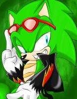 Scourge The Hedgehog by SonicForTheWin2