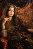 a favourite in harem 2 by evser