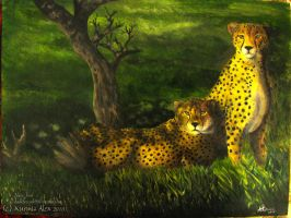 Two cheetah by AlexTF