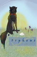 Orpheus by Love-Morton